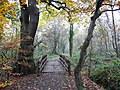 Footbridge, Kingmoor (South) Nature Reserve - geograph.org.uk - 1054641.jpg
