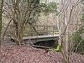 Footbridge - geograph.org.uk - 341372.jpg