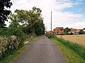 Footpath and lane in front of houses. - geograph.org.uk - 523238.jpg