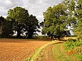 Footpath near Park House - geograph.org.uk - 59467.jpg