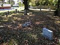 Ford Chapel AME Zion Church Cemetery Memphis TN 009.jpg