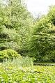 Forest Park, Springfield, MA 01108, USA - panoramio (64).jpg
