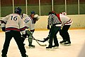 Four-Nation Hockey Tournament 4 (4397139191).jpg