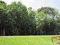 Foz do Iguaçu Município no Paraná.jpg