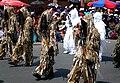 Francotiradores bolivianos de la Armada, Tierra y montaña.jpg