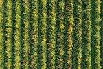 Frechen aerial photo 10-2017 img10.jpg