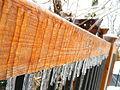 Freezing Rain in Canada 2013 5.JPG