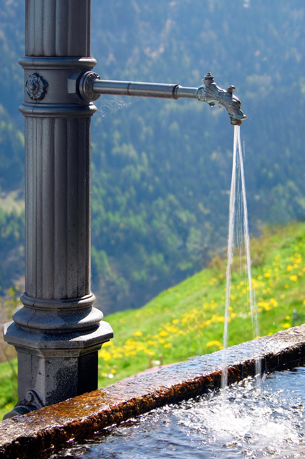 Fresh water fountain
