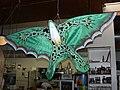 Frog kite 01284.JPG