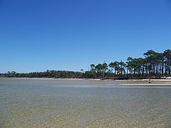 GINS FL Live Oaks north part water south01.jpg