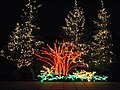 Garden d'Lights 2008 at the Bellevue Botanical Garden, img063.jpg