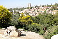 Garden with Gardener - View from Old City Walls - Jerusalem - Israel (5683921273).jpg