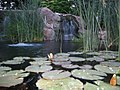 Gardens, BYU-Idaho, Rexburg, Idaho (1133466766).jpg