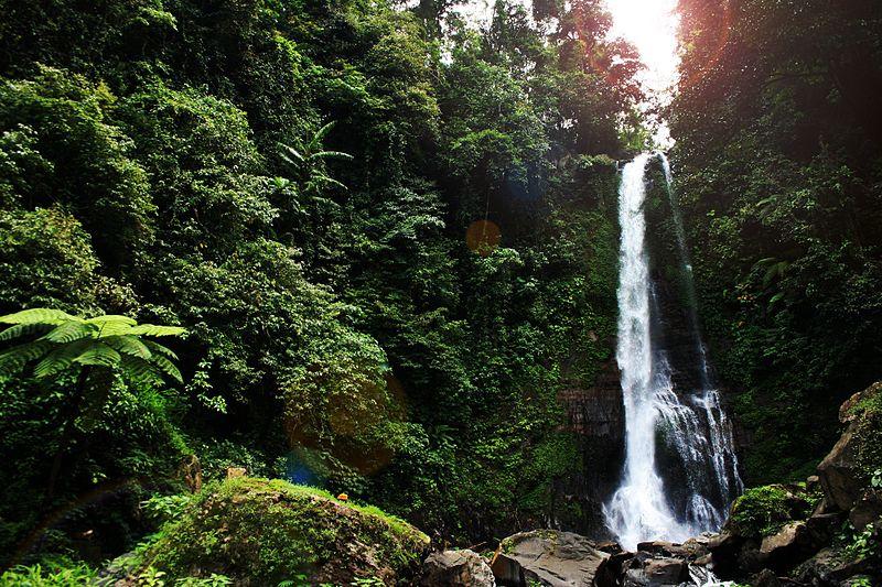 File:Gitgit waterfall bali indonesia 2012 12.jpg