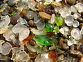 Glass Beach Fort Bragg 3.jpg