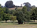 Glastonbury abbey gardens with Chalice Hill beyond - geograph.org.uk - 217620.jpg