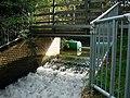 Godmanchester Weir No. 2 - geograph.org.uk - 1022316.jpg