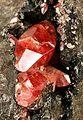 Goethite-Rhodochrosite-d06-224b.jpg