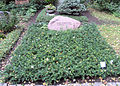 Grabstätte Potsdamer Chaussee 75 (Niko) Hans Bierbrauer.jpg