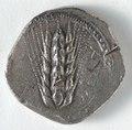 Greece, Matapontum, 6th century BC - Stater - 1916.986 - Cleveland Museum of Art.tif
