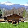 Grindelwald, Mettenberg , Switzerland - panoramio.jpg