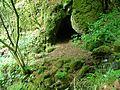 Grotte du loup.jpg