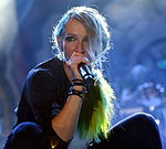 Guano Apes beim Open Flair 2015 (016 by Yellowcard).jpg