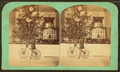 H. Spear's tree, Dec. 25th, 1873, from Robert N. Dennis collection of stereoscopic views.png