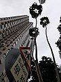 HK 灣仔 Wan Chai 聖佛蘭士街 St. Francis Street near 星街 Star Street March 2020 SS2 10.jpg