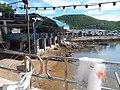 HK 西貢 Sai Kung 清水灣半島 Clear Water Bay Peninsula 布袋澳碼頭 Po Toi O Piers seafood restaurant August 2018 SSG 03.jpg