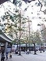 HK CWB 銅鑼灣 Causeway Bay 維多利亞公園 Victoria Park February 2019 SSG 08.jpg