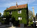 Hadersdorf - efeubewachsenes Haus.jpg