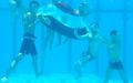 Haggagovic underwater.png