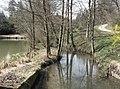Hambach neben dem Hambachsägmühlweiher.jpg