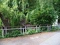 Hamerský rybník, vrby u výpustě.jpg