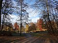Hamm, Germany - panoramio (2663).jpg