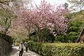 Hasedera Sakurai Nara pref52n4272.jpg