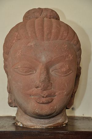 Physical characteristics of the Buddha - Buddha with a mustache, Gupta period. Government Museum, Mathura, India