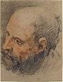 Head of a Bearded Man Looking Left MET 10.45.16.jpg