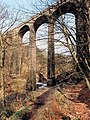 Healey Dell Viaduct - geograph.org.uk - 425607.jpg