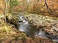 Herbststimmung, Buchberger Leite.jpg