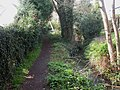 Highcliffe, footpath - geograph.org.uk - 1213109.jpg
