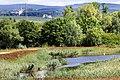 Hinter der Mortkaute-Naturschutzgebiet-Landkreis Mainz-Bingen 01.jpg