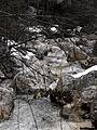 Hintersee Zauberwald Ramsauer Ache Winter.jpg