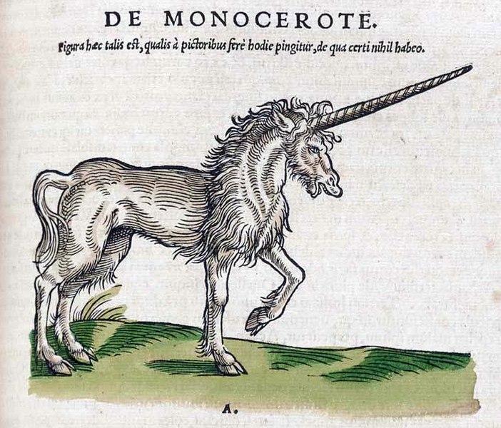 File:Historiae animalium 1551 De Monocerote.jpg