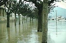 Hochwasser Boppard Rheinanlagen 1980