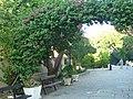 Holidays Greece - panoramio (362).jpg