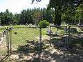Holly Springs Baptist Church Cemetery (2907451754).jpg