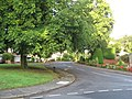 Holyrood Avenue Darlington - geograph.org.uk - 1458260.jpg