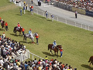 Culture of Mauritius - Maiden 2006 Parade. Horse racing is one of the most popular sports on the island.